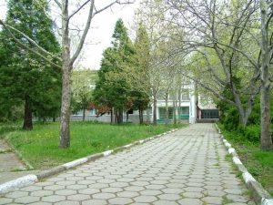 Парк пред общежитието